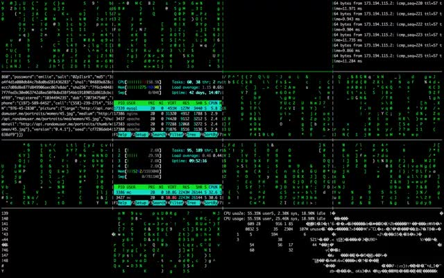 Watch and share Matrix, Console, Hacking, Code GIFs on Gfycat