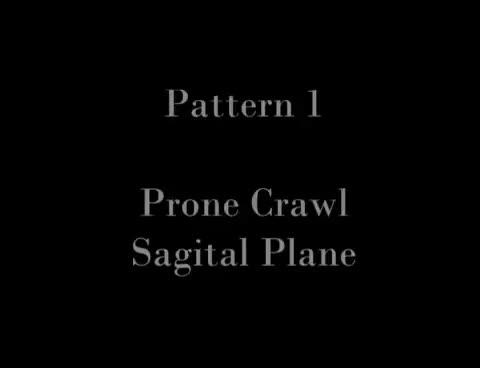 Primal Movement Patterns | Movemental