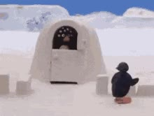 Watch and share Pingu Pinguin GIFs on Gfycat