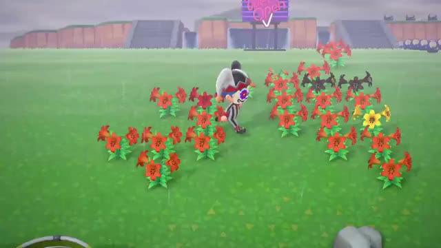 Watch and share Flower Wae GIFs by Poi on Gfycat