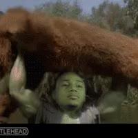 Watch and share Chris Polk Hulk Bear Toss GIFs on Gfycat