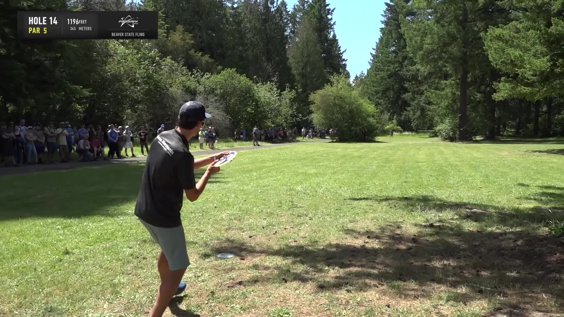 ace, bsf, dela, delaveaga, dgpt, dgwt, disc, disc golf, frolf, hole in one, masters cup, mcbeast, milo, nate sexton, nt, paul mcbeth, pdga, simon lizotte, tournament, worlds, 2019 Beaver State Fling - Final Round, Part 2 - Eagle McMahon hole 14 approach GIFs