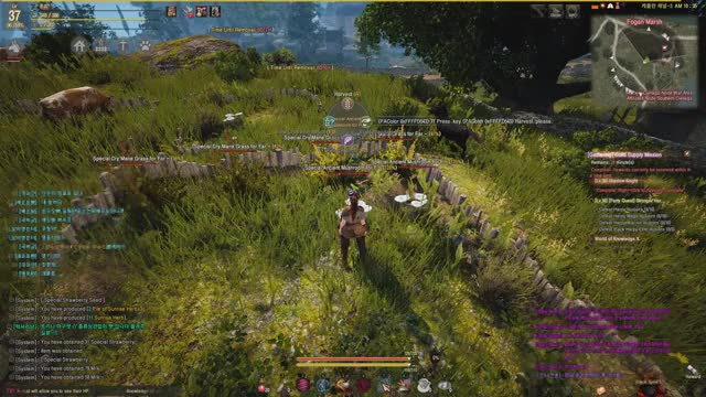 Watch and share Black Desert GIFs by luckyfennec on Gfycat