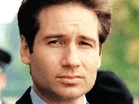 Watch this x files GIF on Gfycat. Discover more dana scully, david duchovny, fox mulder, gillian anderson, mulder, scully, the x files, x files GIFs on Gfycat