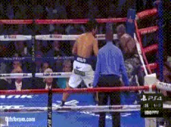 Watch Pacquiao Flurry Bradley 2 GIF by @mightyfighter on Gfycat. Discover more related GIFs on Gfycat