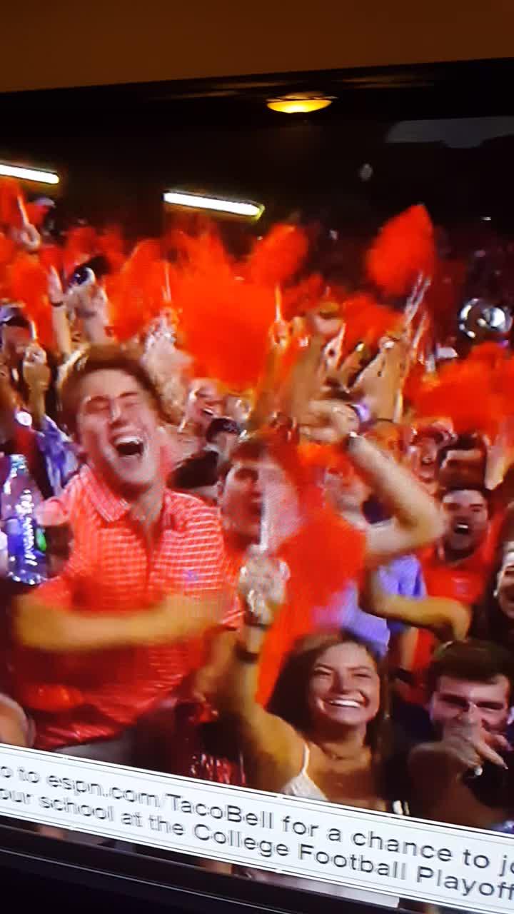 Auburn Fans GIFs