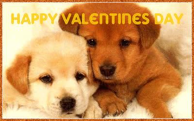 happy valentines day, valentines day, Partner GIFs