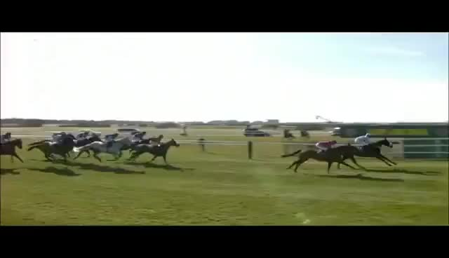 Watch The Chair GIF on Gfycat. Discover more Grand National GIFs on Gfycat