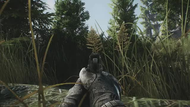 Watch EFT Beta in 25 Seconds GIF on Gfycat. Discover more related GIFs on Gfycat