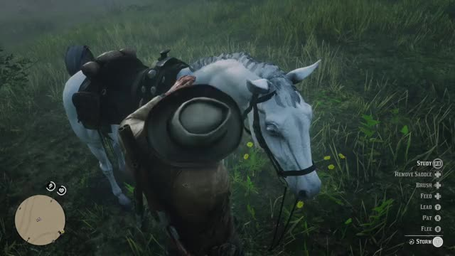 Watch RDR2 Edible horsebrushes GIF by Xbox DVR (@xboxdvr) on Gfycat. Discover more Aviatora, RedDeadRedemption2, xbox, xbox dvr, xbox one GIFs on Gfycat