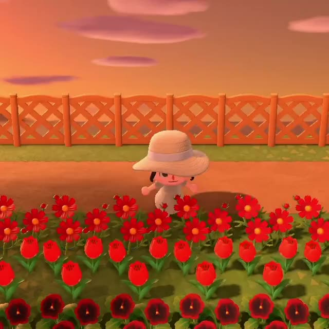 Watch and share Walking Through My Flower Field! GIFs on Gfycat