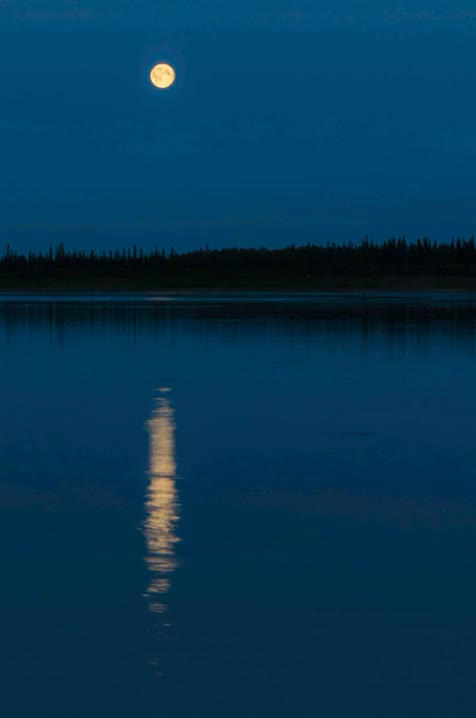 Watch and share Mackenzie River GIFs and Blue Moon 2015 GIFs on Gfycat