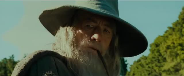 Watch and share Lord Of The Rings GIFs and Really GIFs by AQUILUUS on Gfycat