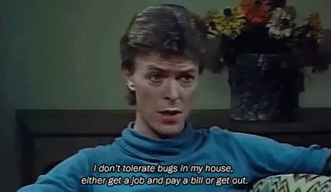 Watch bugs GIF on Gfycat. Discover more david bowie GIFs on Gfycat