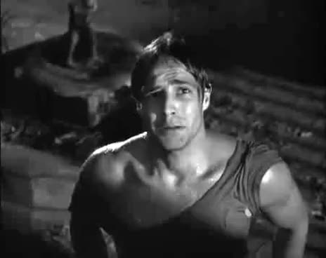 Watch and share Marlon Brando Hey Stella A Streetcar Named Desire   YouTube GIFs on Gfycat