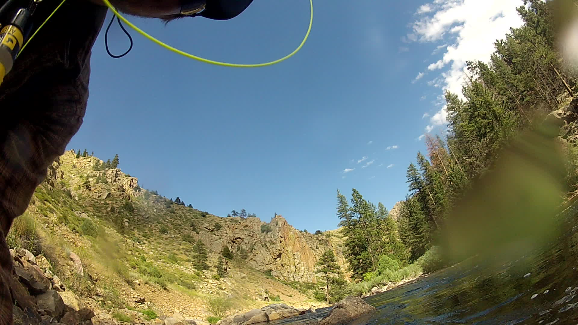 flyfishing, poudre, rainbow trout, Rainbow Release GIFs