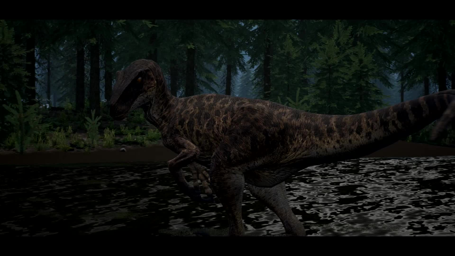 Dinosaur, Game, Survival, The Isle, Raptors GIFs