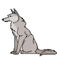 Watch and share Wolf GIFs on Gfycat