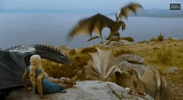 Watch and share Game Of Thrones Dragons GIFs on Gfycat
