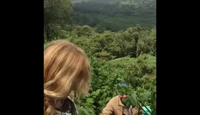 Watch and share Hi! Okay,,, (Original Video) GIFs on Gfycat