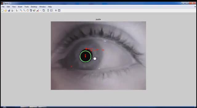 Watch and share Eyetracking GIFs and All Tags GIFs on Gfycat