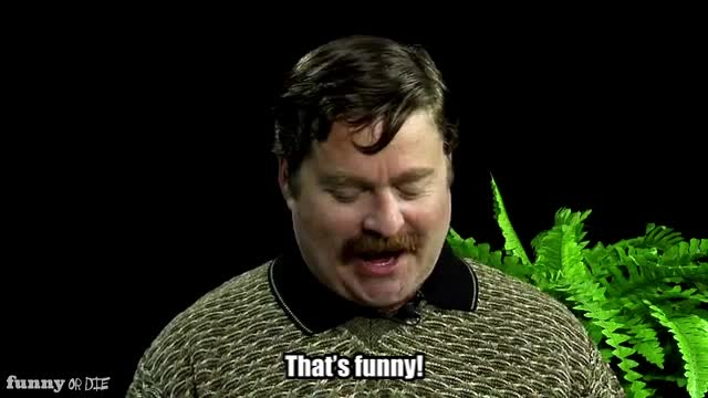 Between Two Ferns with Zach Galifianakis, FoD, Funny or Die, Sean Penn, between two ferns, between two ferns with zach galifianakis, fod, funny, funny or die, funnyoride, sean penn, zach galifianakis, that's funny GIFs