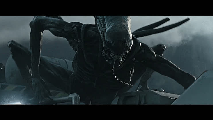 alien, alien covenant, aliens, anger, angry, creepy, dark, hunting, mean, movie, nasty, rage, reaction, scary, sci-fi, science fiction, slobber, slobbering, stalking, weird, Alien GIFs