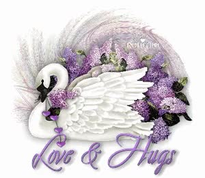 Watch and share Luv & Hugs-Swan GIFs on Gfycat