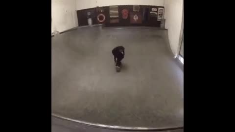 Watch and share Skateboard GIFs by GlobalSweet on Gfycat