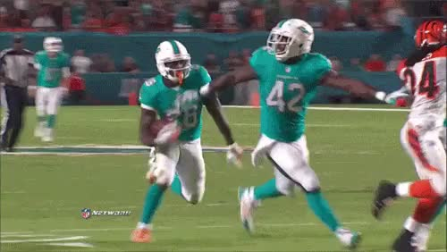 Watch and share Bengals Strip Dolphins GIFs on Gfycat