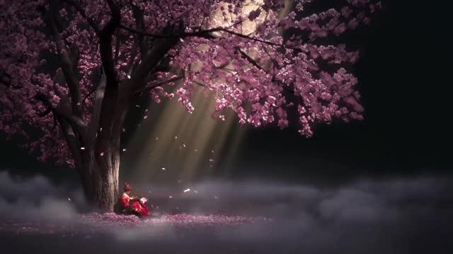 Top 30 Sakura Flowers Gifs Find The Best Gif On Gfycat