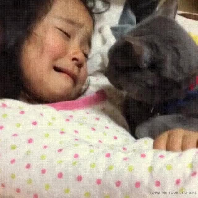 Watch CryingGirlWithCat GIF by PM_ME_YOUR_TITS_GIRL (@pmmeyourtitsgirl) on Gfycat. Discover more animaltextgifs, cat, crying GIFs on Gfycat