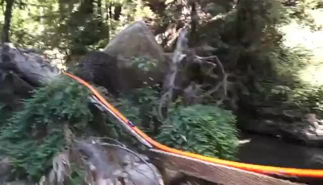 Watch and share Hot Wheels Redwood Track GIFs on Gfycat