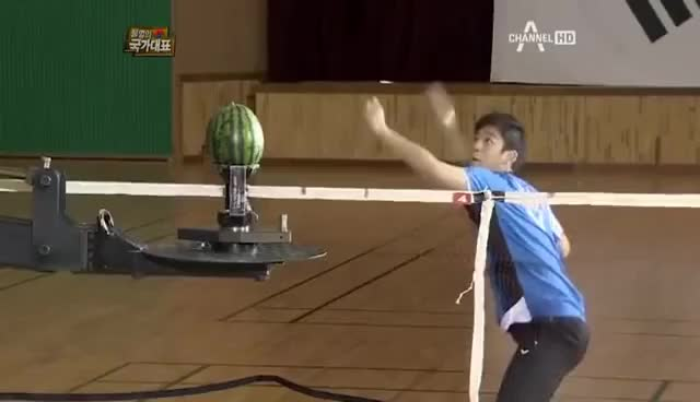 Watch Watermelon GIF on Gfycat. Discover more Badminton GIFs on Gfycat