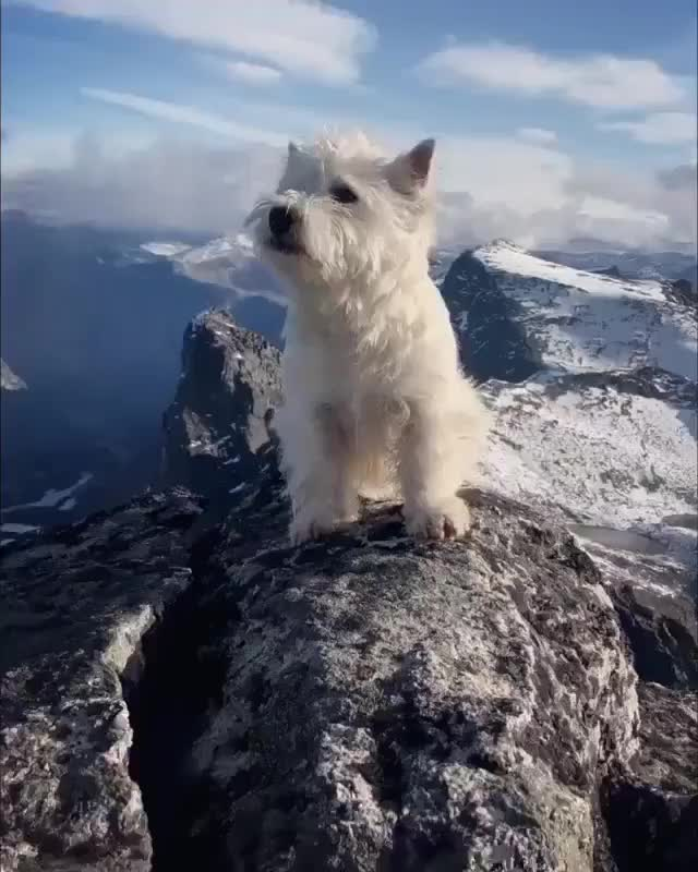 Watch and share Earthporn GIFs and Norway GIFs by GifWorld on Gfycat
