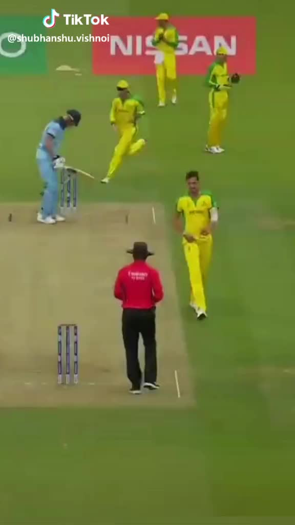 Watch and share Reaction GIFs and Cricket GIFs by TikTok on Gfycat