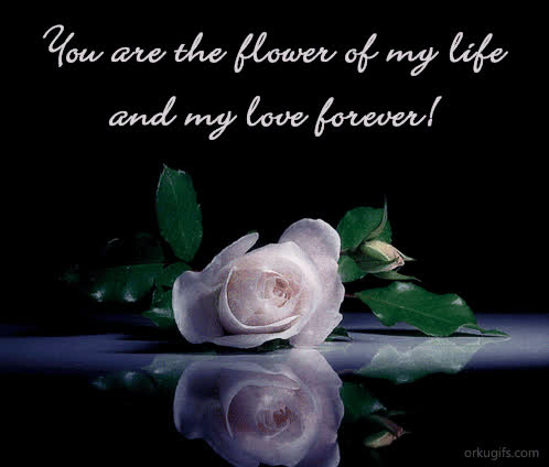 You Are The Love Of My Life And My Love Forever Images And E Cards