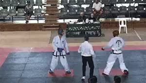 Watch Tae kwon GIF on Gfycat. Discover more head kick, knockout, martial arts, spinning hook kick, taekwondo GIFs on Gfycat