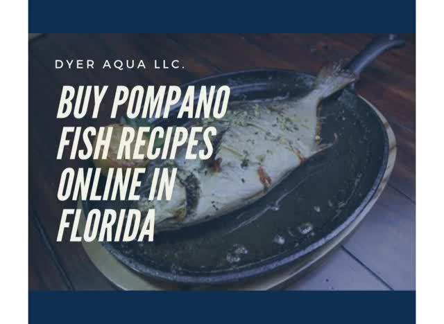 Watch and share Pompano Fish Recipe GIFs by Dyer Aqua LLC. on Gfycat