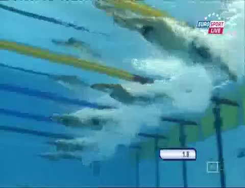 swimming, Swimming GIFs