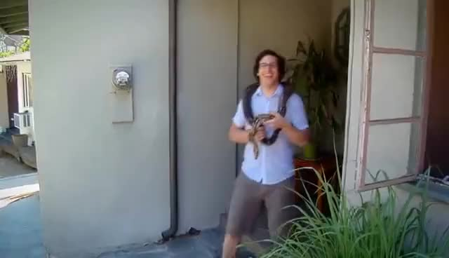 Watch Steve GIF on Gfycat. Discover more steve GIFs on Gfycat