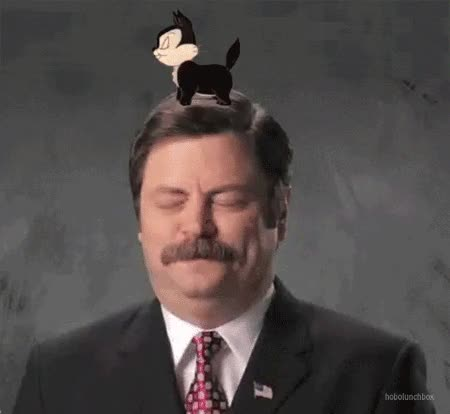 Watch and share Nick Offerman GIFs and Yourestupid GIFs by Reactions on Gfycat