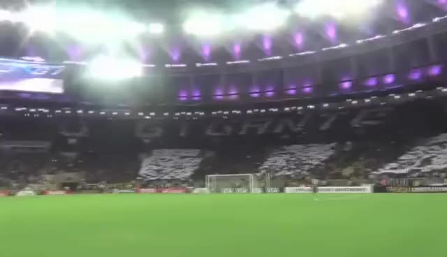 Watch and share Moisaico Botafogo GIFs on Gfycat