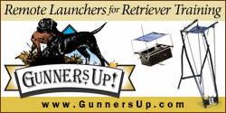 Gunners Up GIFs