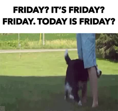 Watch this days of the week GIF by GIF Reactions (@visualecho) on Gfycat. Discover more days of the week, friday, fridays, tgif GIFs on Gfycat