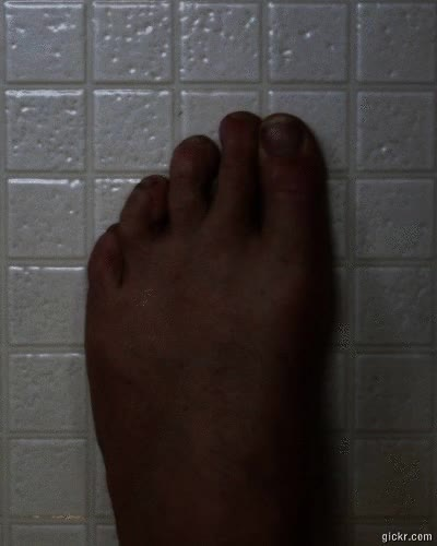 Watch Toes GIF on Gfycat. Discover more related GIFs on Gfycat