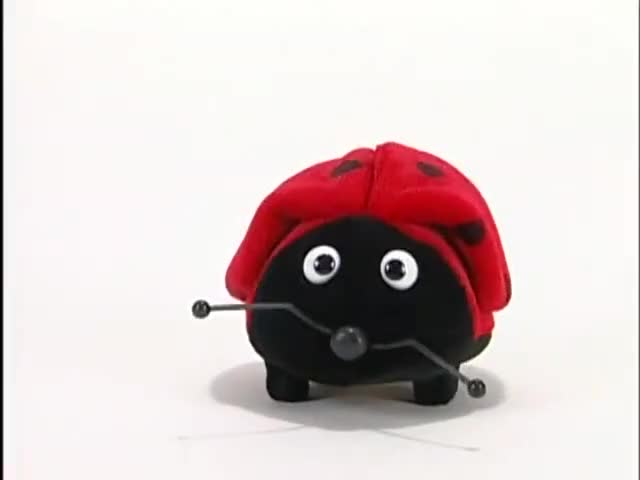 Watch this beetle GIF on Gfycat. Discover more beetle, ladybug GIFs on Gfycat