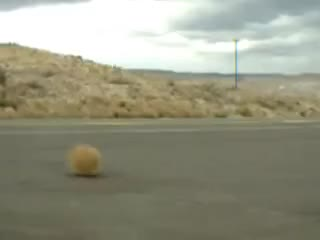 Watch Tumble weed GIF on Gfycat. Discover more tumble, weed GIFs on Gfycat