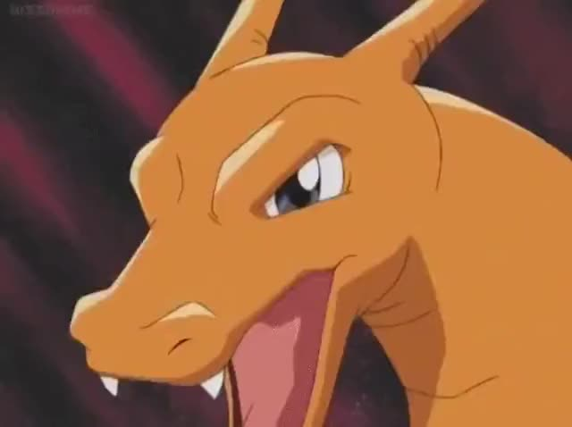 Watch and share Charizard GIFs by doctorgecko on Gfycat