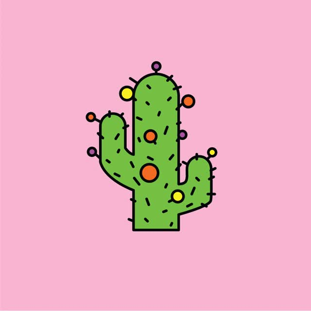 Watch and share Christmas Cactus  GIFs on Gfycat